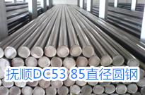 抚顺特钢于中山华氏设立DC53圆钢直供基地
